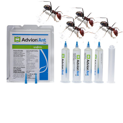 Advion Ant Gel Bait  (4 Tubes   1 Plunger   2 Tips ) , 30 grams per Tube